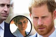 """Dùng hình ảnh của mẹ quá cố để """"kiếm lợi', Hoàng tử Harry châm ngòi cho trận chiến mới với anh trai William, Hoàng gia Anh cũng phải tức giận?"""