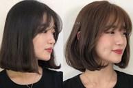 """12 gợi ý làm tóc vừa xinh vừa sang cứu vãn mái tóc """"không ra thể thống"""""""