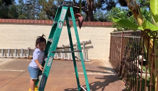 Giữa ồn ào chuyện con trai Ngô Kiến Huy, Thanh Thảo khoe vườn nhà xanh mát trong biệt thự triệu đô ở Mỹ-9