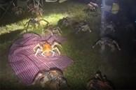 Tìm nơi vắng cắm trại nướng thịt ban đêm, gia đình run bần bật khi thấy binh đoàn 'quái vật' khổng lồ tấn công, nhìn kỹ mới biết danh tính