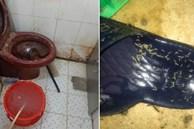 Nhân viên cũ tiết lộ bí mật kinh hoàng trong lò bánh mì nổi tiếng Sài Gòn: Giòi và cả 'bé na' ngoe nguẩy trong khu chế biến, dùng thịt bò ôi thiu làm nhân bánh?