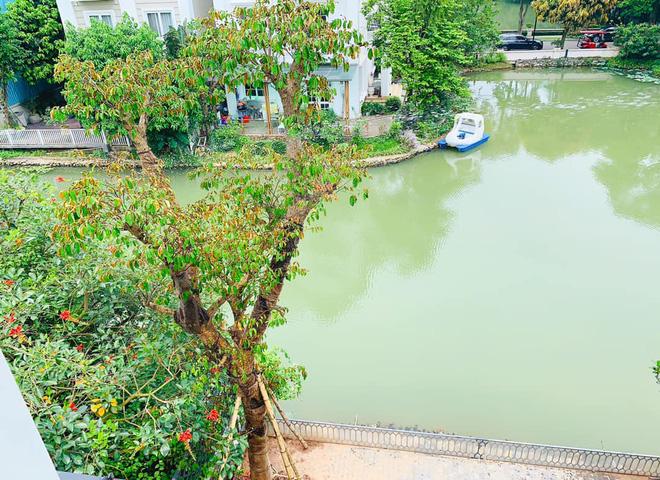 Cuộc sống nhung lụa, giàu sang của Lã Thanh Huyền ở tuổi 35-4