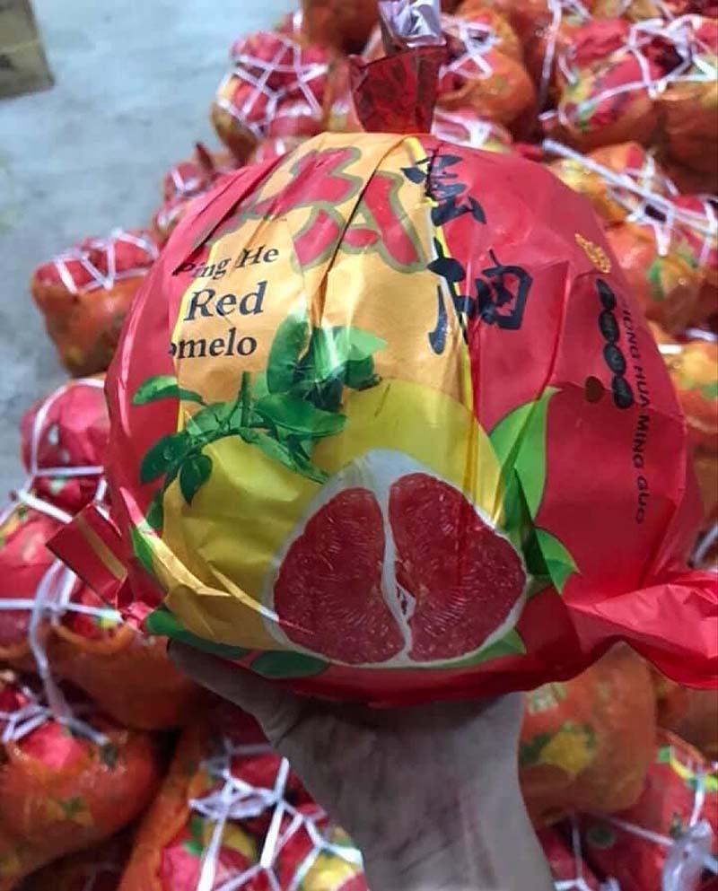 Bưởi Trung Quốc ruột đỏ au: Vỏ vàng không hạt, ngày bán cả tấn-2
