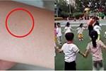 Vụ trẻ mẫu giáo có vết kim đâm kỳ lạ: Cảnh sát bắt được 3 cô giáo tàn độc, hiệu trưởng trường mẫu giáo bị cách chức-5