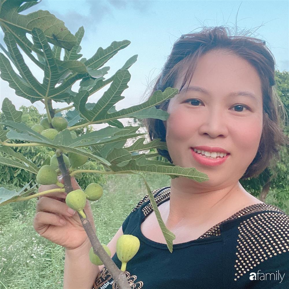 Tận dụng sân thượng chung cư, nữ giám đốc ở Hà Nội đã trồng được một vườn rau đủ loại rau quả sạch với 8 triệu tiền đầu tư-3