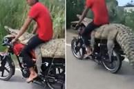 Nam thanh niên ngồi lên lưng cá sấu trên xe máy ở Mexico