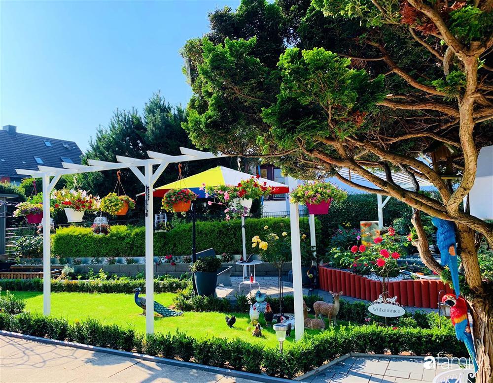 Vườn hoa 500m² đẹp như cổ tích được tạo bởi tình yêu thiên nhiên của cặp vợ chồng dành cả thanh xuân để trồng cây-2