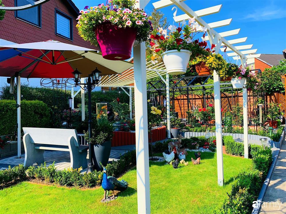 Vườn hoa 500m² đẹp như cổ tích được tạo bởi tình yêu thiên nhiên của cặp vợ chồng dành cả thanh xuân để trồng cây-3