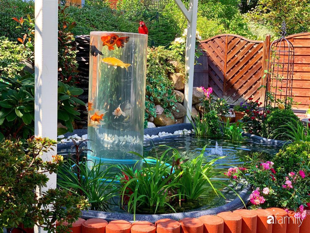 Vườn hoa 500m² đẹp như cổ tích được tạo bởi tình yêu thiên nhiên của cặp vợ chồng dành cả thanh xuân để trồng cây-5