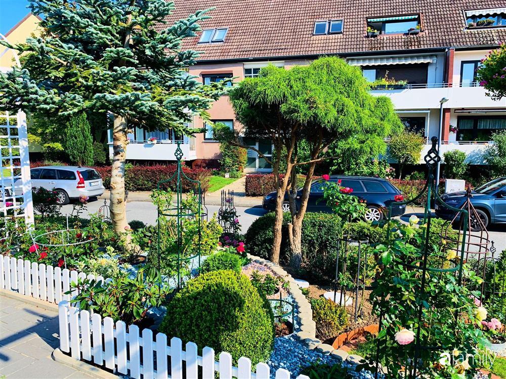Vườn hoa 500m² đẹp như cổ tích được tạo bởi tình yêu thiên nhiên của cặp vợ chồng dành cả thanh xuân để trồng cây-6
