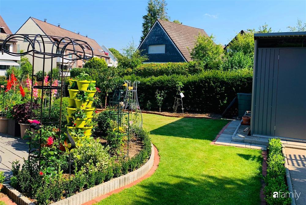 Vườn hoa 500m² đẹp như cổ tích được tạo bởi tình yêu thiên nhiên của cặp vợ chồng dành cả thanh xuân để trồng cây-7