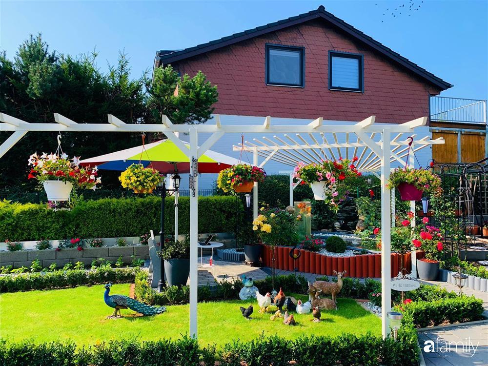 Vườn hoa 500m² đẹp như cổ tích được tạo bởi tình yêu thiên nhiên của cặp vợ chồng dành cả thanh xuân để trồng cây-8