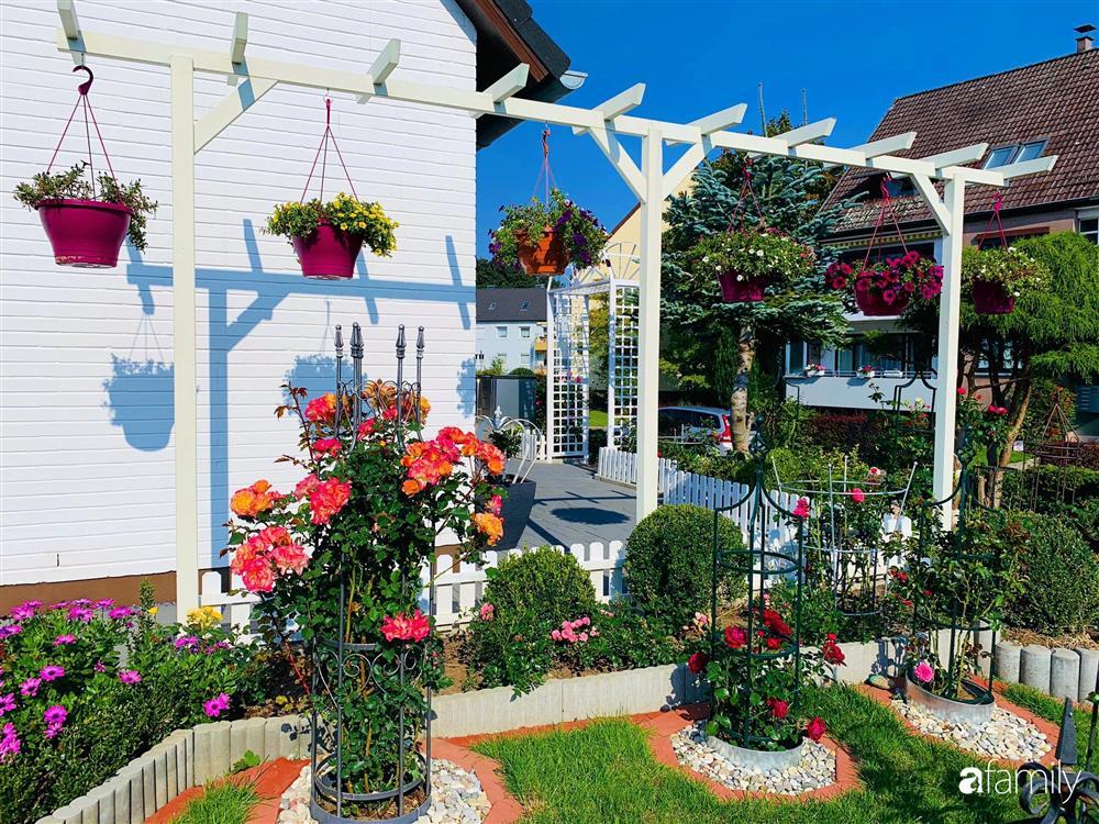 Vườn hoa 500m² đẹp như cổ tích được tạo bởi tình yêu thiên nhiên của cặp vợ chồng dành cả thanh xuân để trồng cây-9