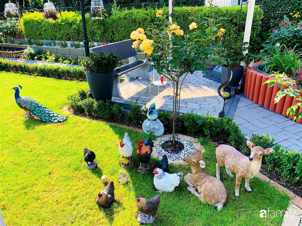 Vườn hoa 500m² đẹp như cổ tích được tạo bởi tình yêu thiên nhiên của cặp vợ chồng dành cả thanh xuân để trồng cây-11