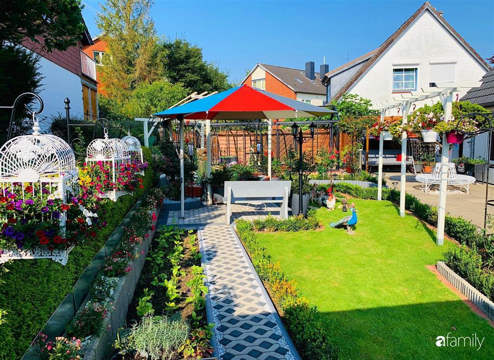 Vườn hoa 500m² đẹp như cổ tích được tạo bởi tình yêu thiên nhiên của cặp vợ chồng dành cả thanh xuân để trồng cây-13