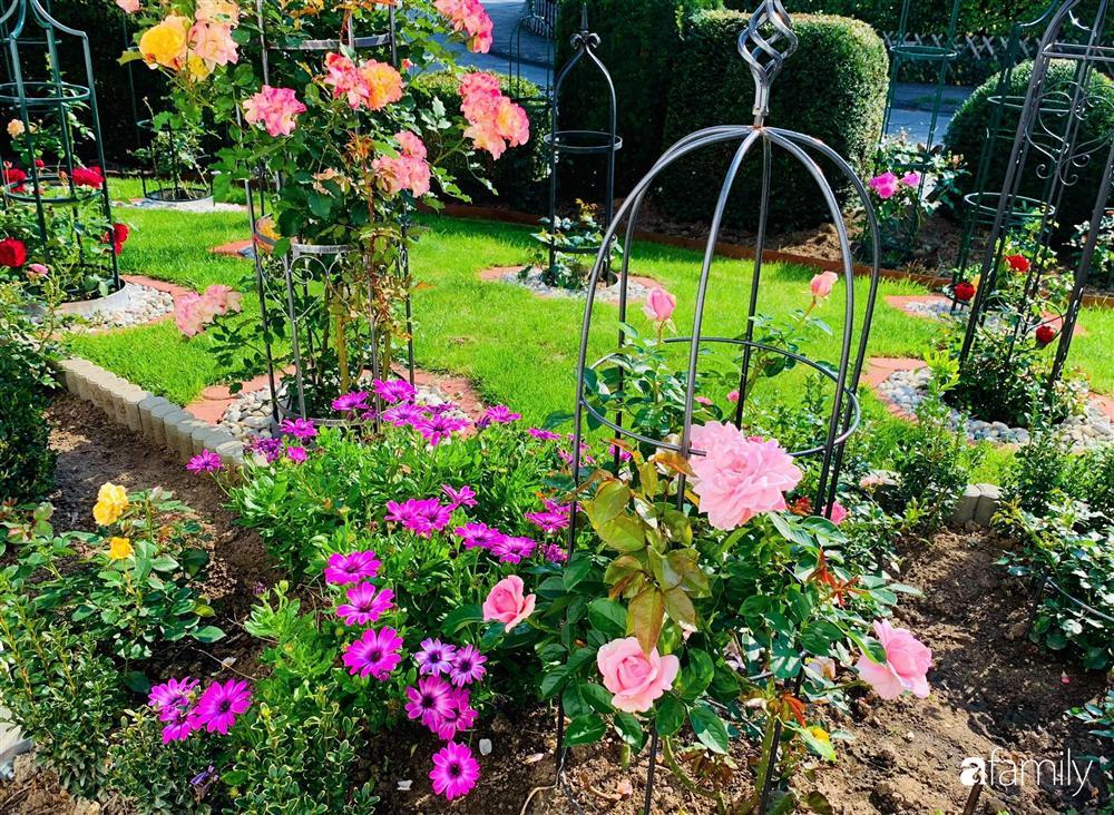Vườn hoa 500m² đẹp như cổ tích được tạo bởi tình yêu thiên nhiên của cặp vợ chồng dành cả thanh xuân để trồng cây-14