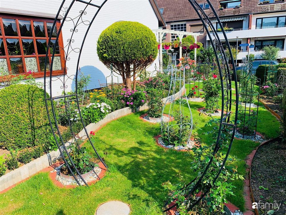 Vườn hoa 500m² đẹp như cổ tích được tạo bởi tình yêu thiên nhiên của cặp vợ chồng dành cả thanh xuân để trồng cây-23