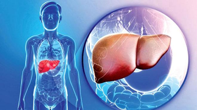 Nhiều người ăn kiêng vẫn bị gan nhiễm mỡ: Cách ăn sai lầm làm hại gan có thể bạn đang mắc-1