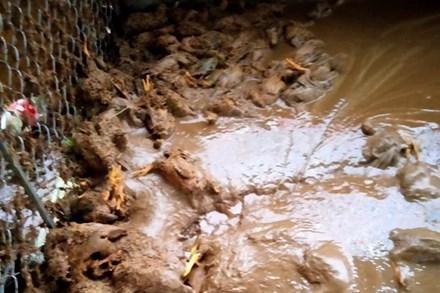 Lào Cai mưa lớn kỷ lục 63 năm qua gây ngập lụt cuốn trôi nhà dân, bé 3 tuổi tử vong
