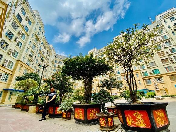 Nghệ sĩ Quang Tèo khoe khu vườn nhỏ muôn hoa đua sắc trước căn chung cư 7 tỷ đồng-7