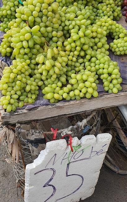 """Nho xanh không hạt giá siêu rẻ"""" bán tràn lan, người trồng nho ở Ninh Thuận nói gì?-1"""