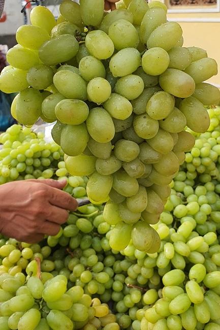 """Nho xanh không hạt giá siêu rẻ"""" bán tràn lan, người trồng nho ở Ninh Thuận nói gì?-2"""