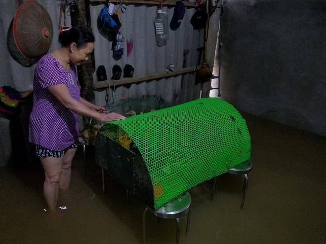 Lũ lên nhanh, người dân ở Huế phải dùng thuyền sơ tán khỏi vùng bị ngập hơn 1 mét-13