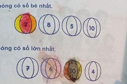 Góc rối não: Bài toán lớp 1 với đề bài chọn ngẫu nhiên bi xanh - bi đỏ khiến dân mạng tranh cãi nảy lửa vì đánh đố cả phụ huynh lẫn học sinh
