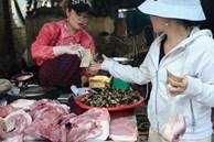 Giá lợn hơi xuống thấp nhất trong vòng 1 năm
