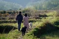Chưa tới 40 tuổi, cặp vợ chồng này đã tìm ra bí quyết tiết kiệm giúp có đủ tiền tiêu tới hết đời