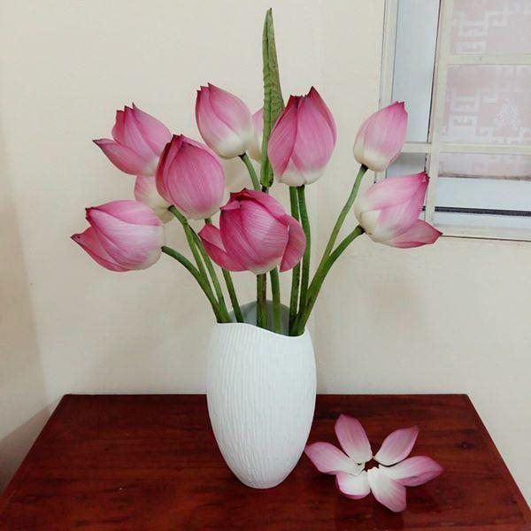 3 tháng cuối năm nhất định phải đặt loại hoa này trong phòng khách, kéo may mắn về gấp đôi-1