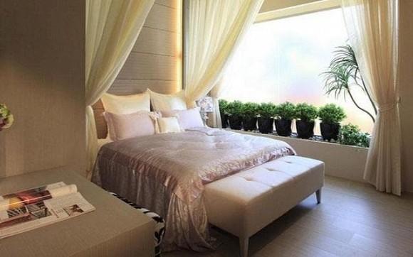 Những cây cảnh nào nên và không nên đặt trong phòng ngủ?-6