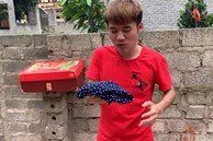 """Dừng hoạt động được vài ngày, Hưng Vlog lại đăng clip ''cà khịa'' mẹ, nhưng để không bị dân mạng phản ứng đã phải dùng đến """"chiêu cuối"""" này"""