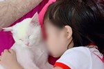 Gia đình bé gái 5 tuổi tử vong vì học theo trò treo cổ trên Youtube tiết lộ về chương trình cháu hay xem, đã từng treo cổ hụt một lần-3