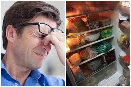 Tủ lạnh tiêu tốn nhiều điện nhất khi ngăn mát đầy và ngăn đá trống?