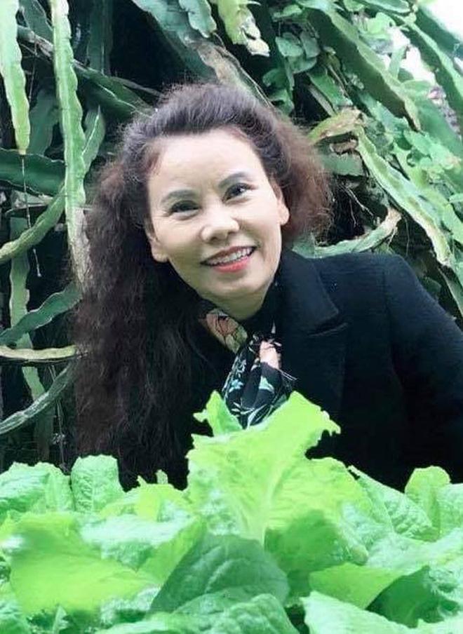 Trấn Thành thông báo không thể vào miền Trung, chuyển tiền nhờ các nghệ sĩ Việt giúp cứu trợ, Hà Hồ có bình luận gây chú ý-5