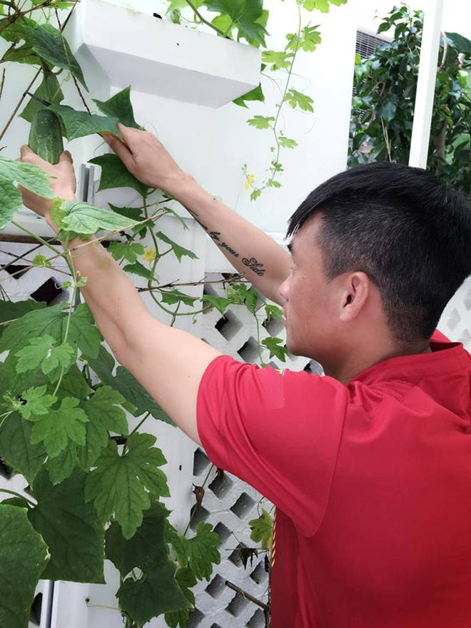 Không chỉ từ thiện khắp nơi, Thủy Tiên còn nổi tiếng thảo ăn, trồng rau được cho hết-17