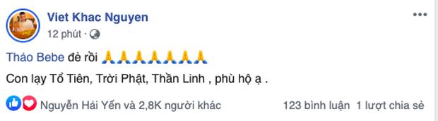 Bà xã Khắc Việt chính thức hạ sinh đôi trai gái đầu lòng-1