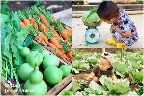 Bỏ phố lấy chồng Đắk Lắk, nàng dâu choáng khi chồng dẫn ra kho lương thực 700m2 của gia đình-2