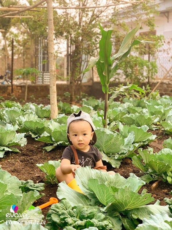 Bỏ phố lấy chồng Đắk Lắk, nàng dâu choáng khi chồng dẫn ra kho lương thực 700m2 của gia đình-23
