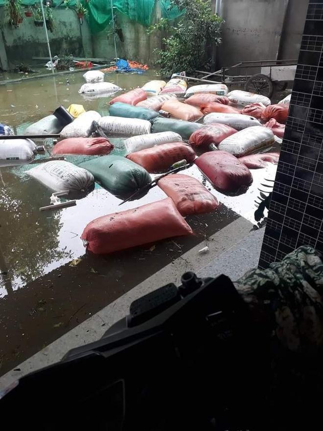 Khung cảnh nhà cửa tan hoang sau trận đại hồng thuỷ ở Quảng Bình: Tài sản bị ngâm nước nhầy nhụa bùn đất, thóc mọc mầm, vật nuôi chết hàng loạt-11