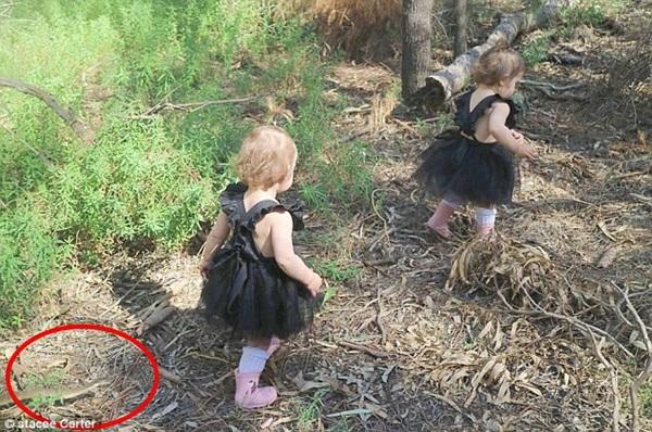 Đưa 2 con sinh đôi đi công viên chơi, bà mẹ thót tim khi thấy Tử thần cận kề trong gang tấc, xem lại ảnh mới thấy quá may mắn-2