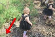 Đưa 2 con sinh đôi đi công viên chơi, bà mẹ thót tim khi thấy 'Tử thần' cận kề trong gang tấc, xem lại ảnh mới thấy quá may mắn