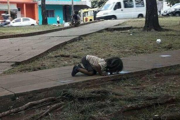 Bức ảnh bé gái quỳ rạp xuống đất, uống nước từ vũng nước bẩn trên đường khiến cả thế giới xót xa và câu chuyện ít ai biết-1