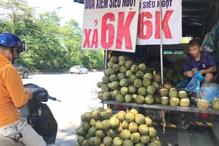 """Hà Nội: Dừa xiêm bán """"giá rẻ như cho"""", người bán tiết lộ nguyên nhân"""