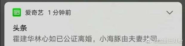"""Rộ tin Lâm Tâm Như - Hoắc Kiến Hoa đã ly hôn, nguồn tin từng dự đoán đúng Phạm Băng Băng - Lý Thần toang""""-3"""