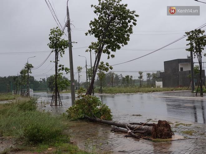 Bão số 9 đổ bộ: Gió giật mạnh ở Quảng Ngãi, đã có nhà bị tốc mái; phong toả một phần Quốc lộ 1A khiến hàng trăm xe ùn tắc-3