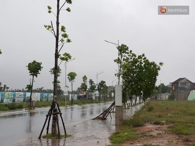 Bão số 9 đổ bộ: Gió giật mạnh ở Quảng Ngãi, đã có nhà bị tốc mái; phong toả một phần Quốc lộ 1A khiến hàng trăm xe ùn tắc-6