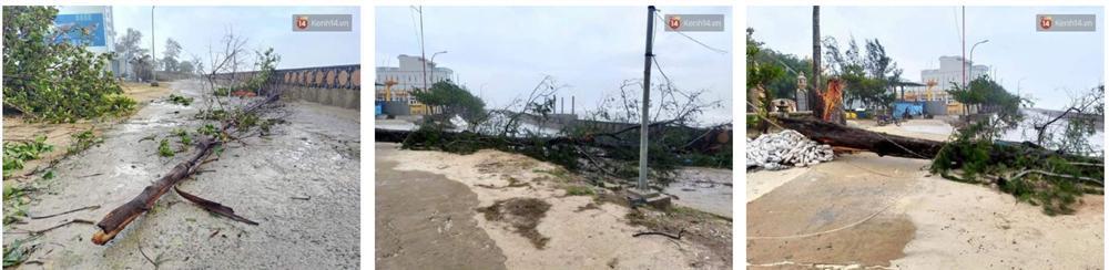 Những hình ảnh đầu tiên tại đảo Lý Sơn khi bão số 9 đi qua: Mọi thứ đều tan hoang, người dân thất thần bên đống đổ nát-5