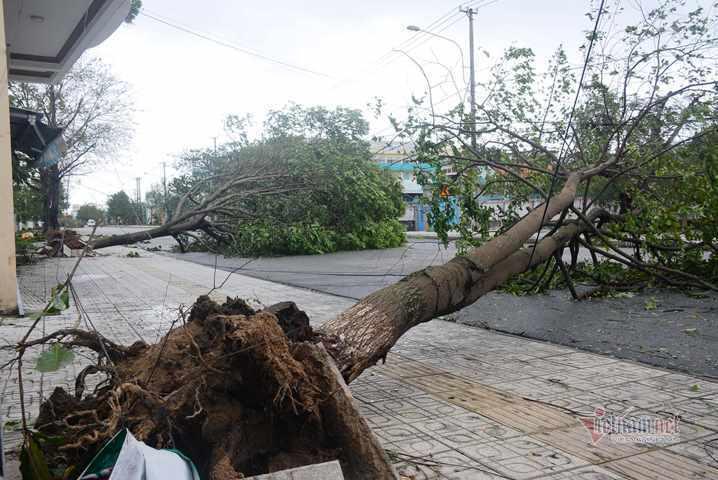 Sau bão số 9, đường phố Đà Nẵng, Quang Nam tan hoang không ngờ-1